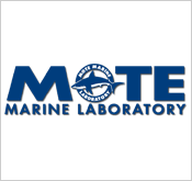 Mote Marine