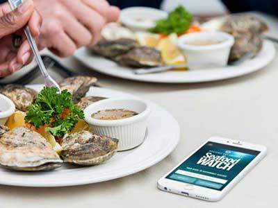 Download the Seafood Watch App