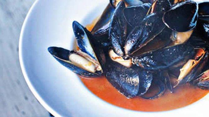 Mussels Saint – Ex
