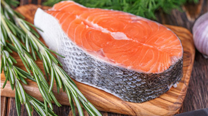 FDA Approves Genetically Altered Salmon