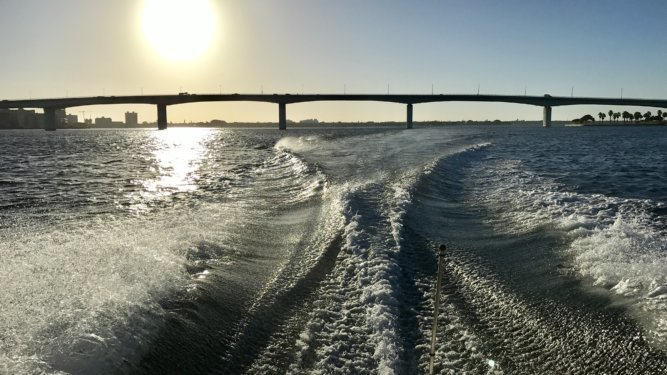 Sarasota Bay Watch Happenings by Larry Stults