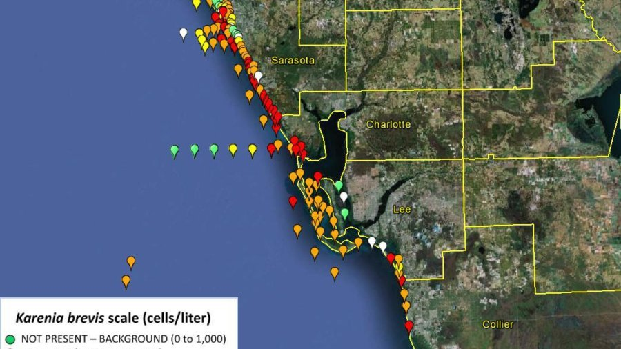 Red Tide testing results