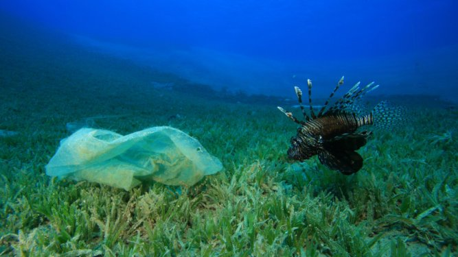 Plastics….a Serious Threat to our Oceans, Seas and Waterways