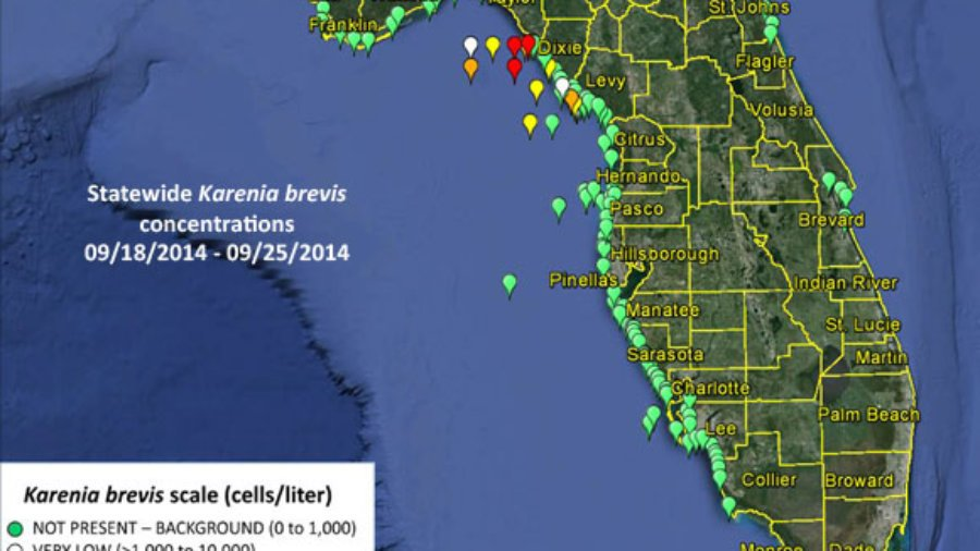 Red tide sample map