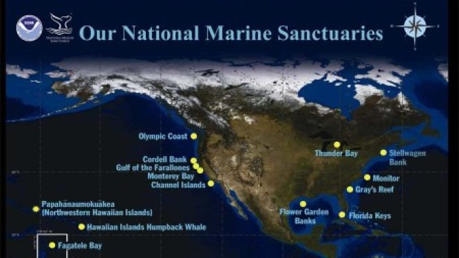 Public to Nominate New Marine Sanctuaries