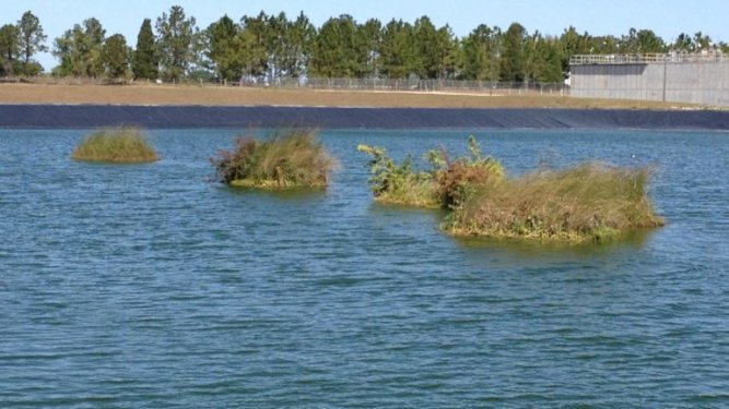 Man-made floating islands help reduce pollution