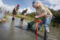Conservation Corp to Help Restore Gulf of Mexico Ecosystems