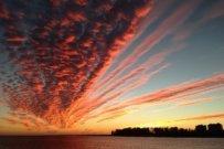 Sarasota Baywatch Happenings by Larry Stults