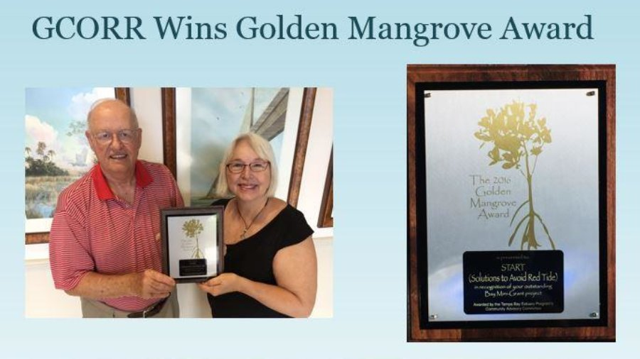 GCORR - Golden Mangrove Award
