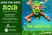 2019 Seagrass Survey & Nature Festival