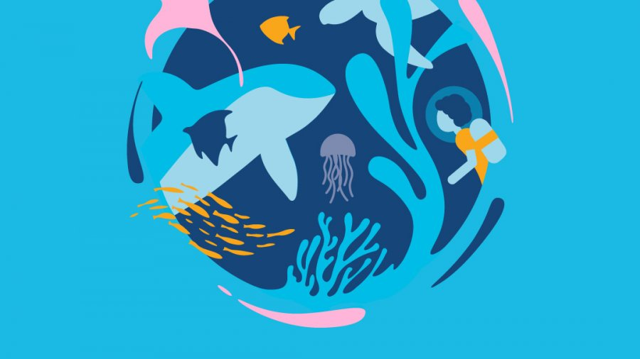 Happy World Oceans Day June 8