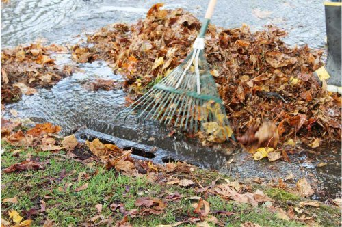 Keep leaves out of drains