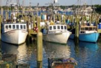 U.S. Fisheries Report Released