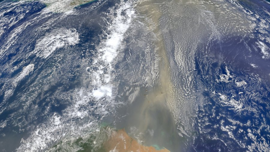 Saharan Dust Headed for the Gulf Coast