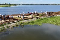 NEW MICROFOREST AT NATHAN BENDERSON PARK
