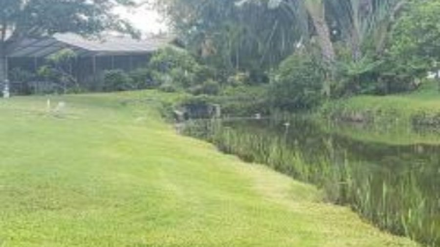 Pinebrook South Takes On Pond Project